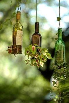Bottles.nojavanha (11)