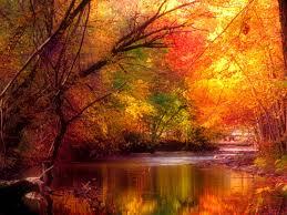 autumn.nojavanha
