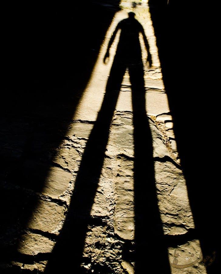Shadows.nojavanha (11)