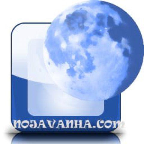 مرورگر pale moon