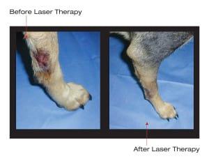 Laser-nojavanha (1)
