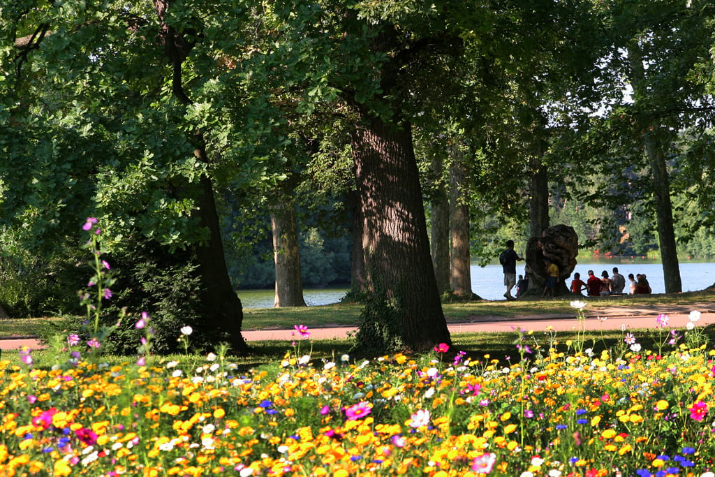 باغ های زیبا (1)