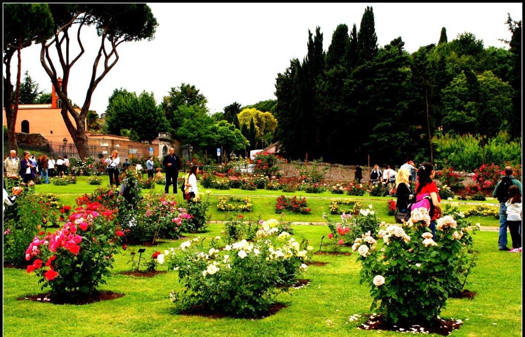 باغ های زیبا (11)