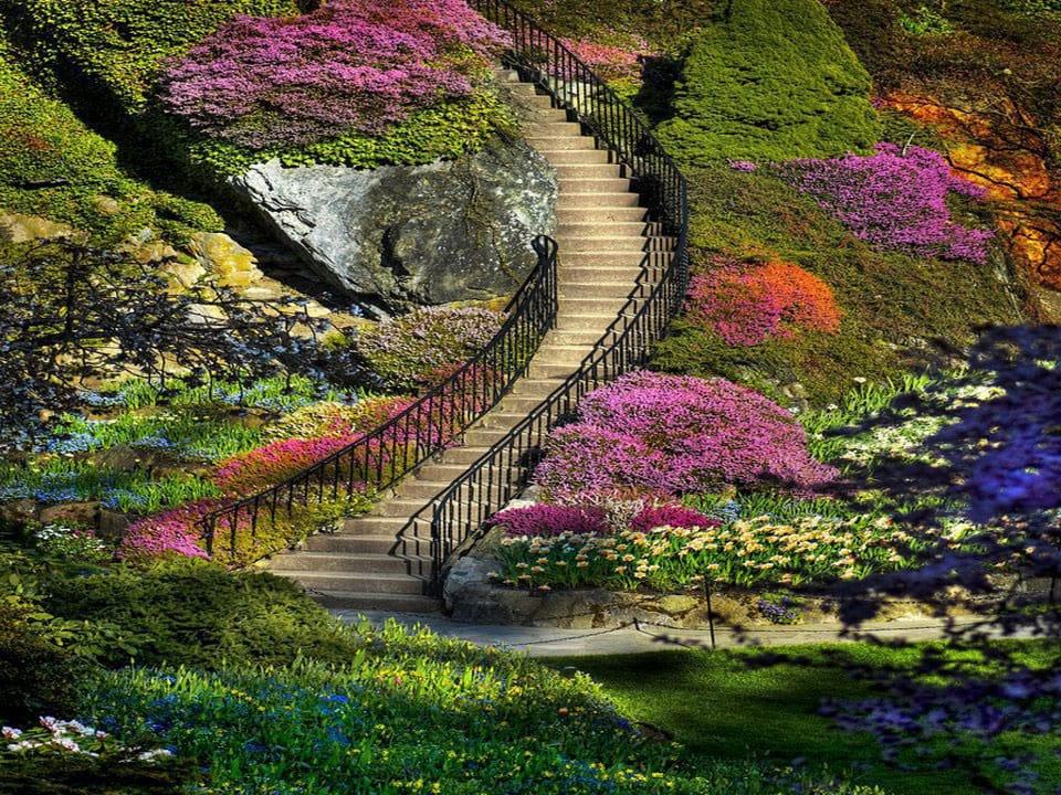 باغ های زیبا (13)