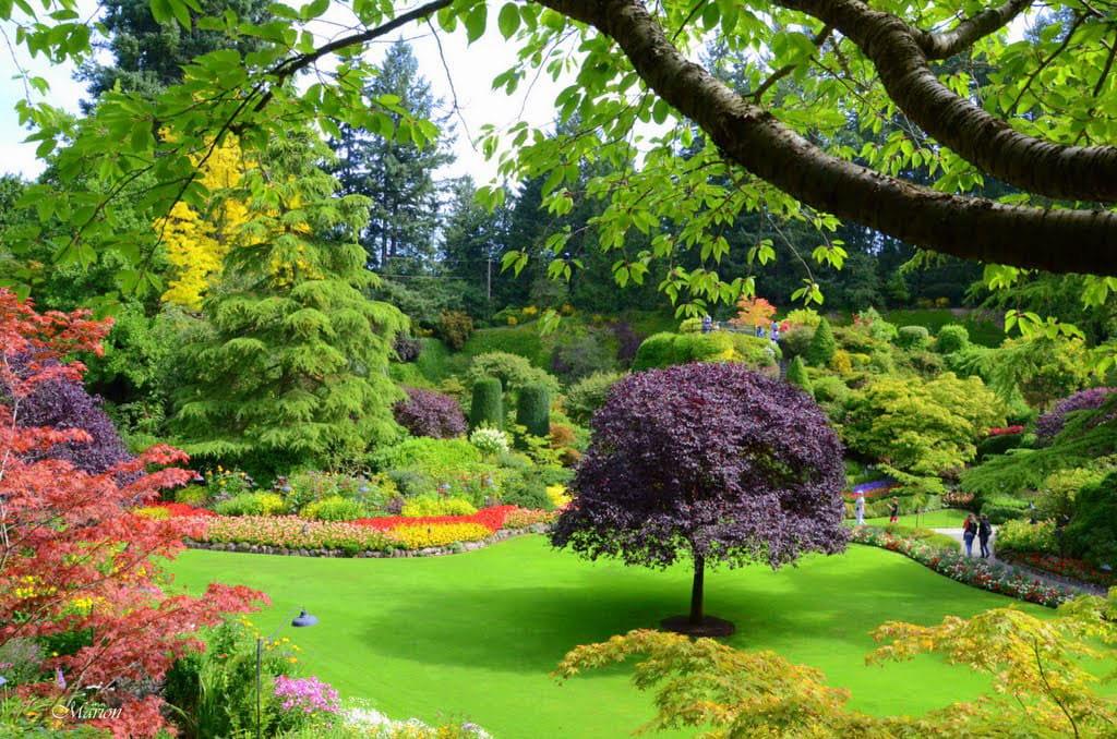 باغ های زیبا (14)