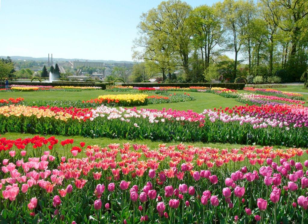باغ های زیبا (25)