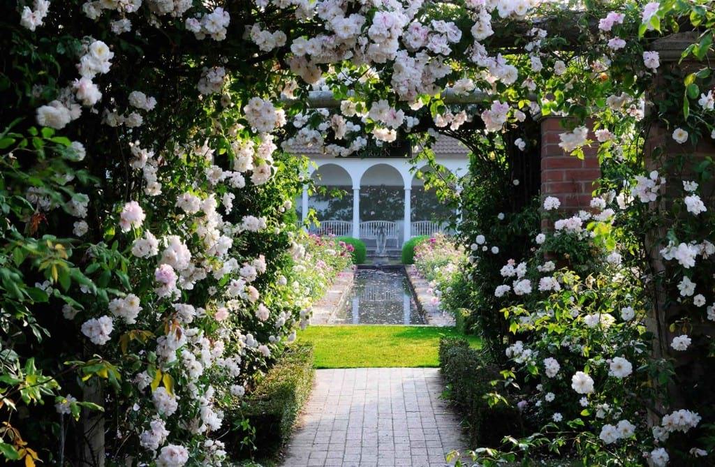 باغ های زیبا (3)