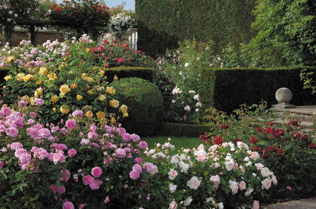 باغ های زیبا (4)