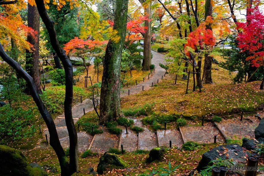 باغ های زیبا (6)