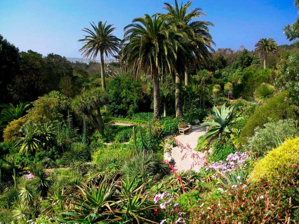 باغ های زیبا (9)