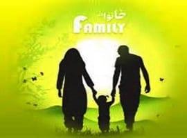 آشفتگی کانون خانواده مهم ترین دلیل بزهکاری نوجوانان است