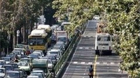کاشت ۲ هزار چنار ۱۰ ساله در خیابان ولیعصر (عج)