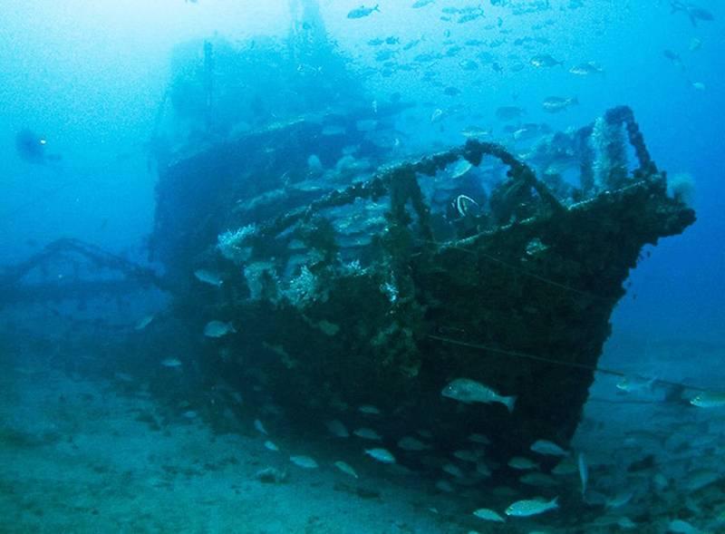 دیدنی های دریاها (5)