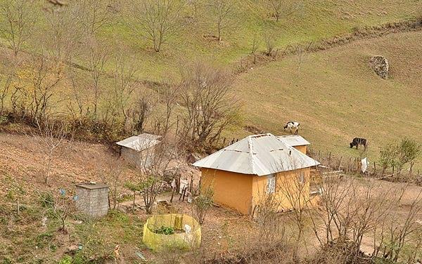 روستای ارده (6)