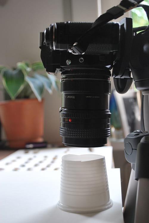 عکاسی ماکرو (1)