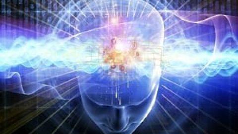 چگونه مغز ما به عنوان دستگاه GPS کار میکند؟