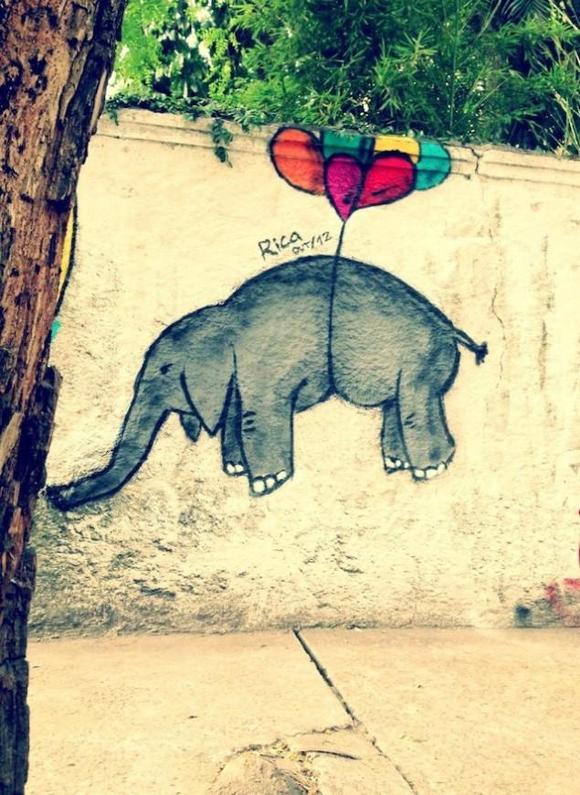هنرنمایی بر بوم دیوار