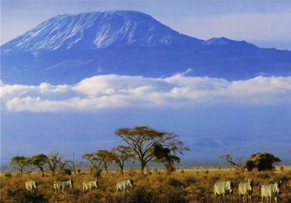 کوه های کلیمانجارو