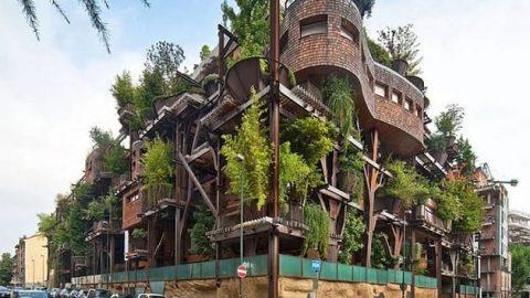 خانه ای ساخته شده از ۱۵۰ درخت