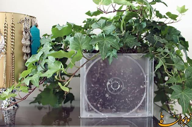 گل کاری در جلد سی دی