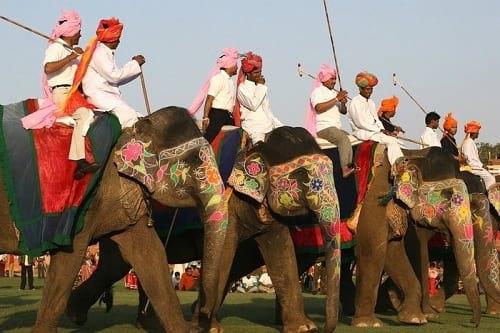جشنواره فیل های رنگی (17)
