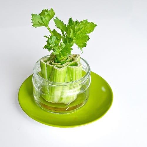 کاشت سبزیجات  (1)