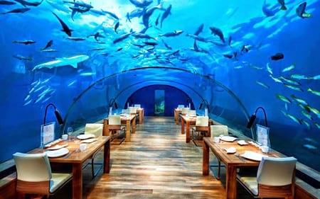 بهترین رستورانهای زیر آب