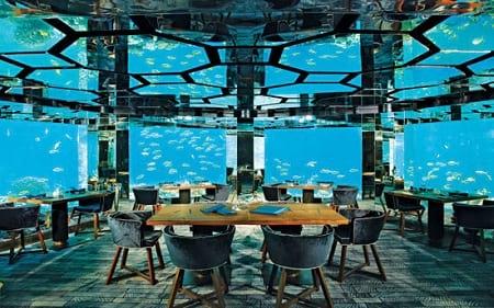 بهترین رستوران های زیر آب (6)