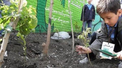 راهاندازی مدارس «جم» در همه استانها / آموزش ۸۰۰۰ معلم مروج محیط زیست