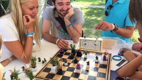 شطرنجی برای عاشقان طبیعت