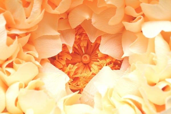 گل های کاغذی (12)