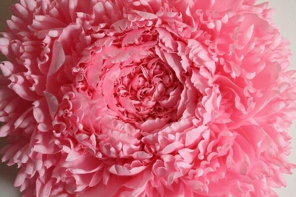گل های کاغذی (2)