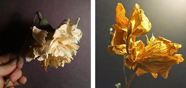 گل های کاغذی (4)