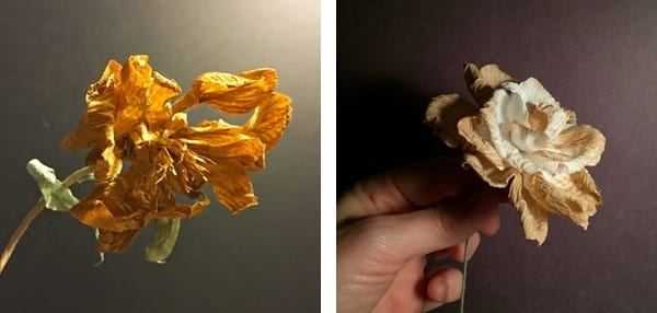 گل های کاغذی (5)
