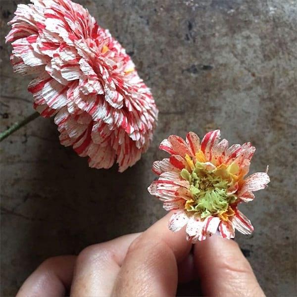 گل های کاغذی (8)