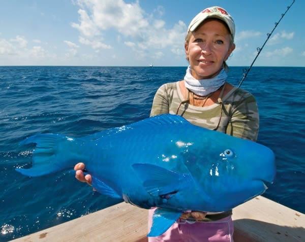 ماهی آبی