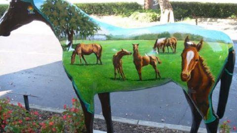 اسب های رنگین