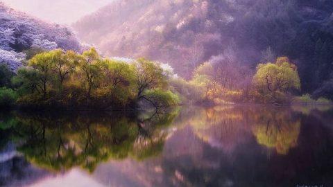 انعکاس خیره کننده طبیعت در آب