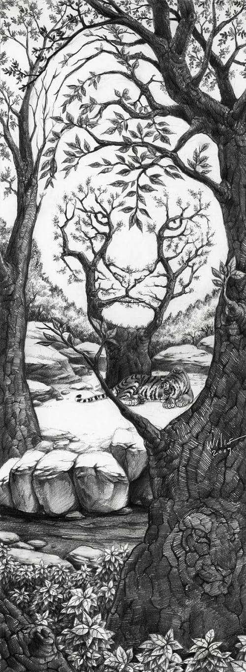 در جنگل چند ببر می بینید؟
