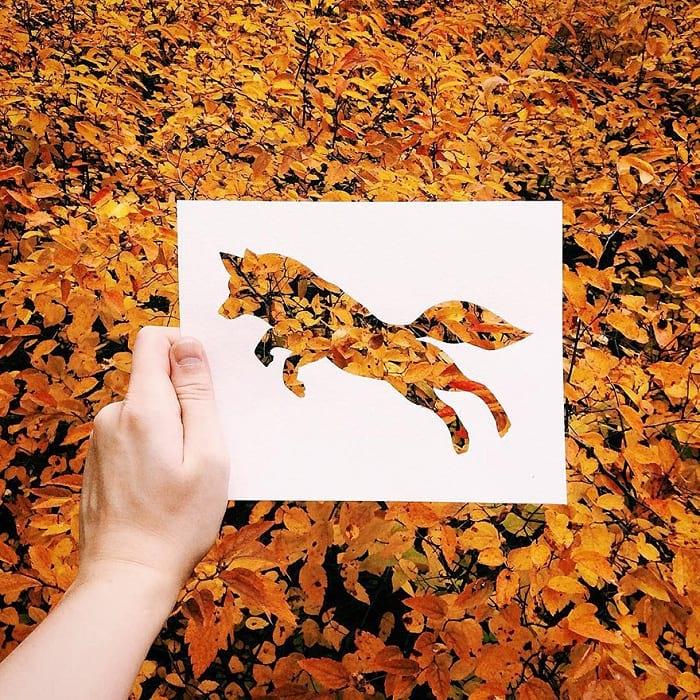حیوانات با پوشش طبیعت (1)
