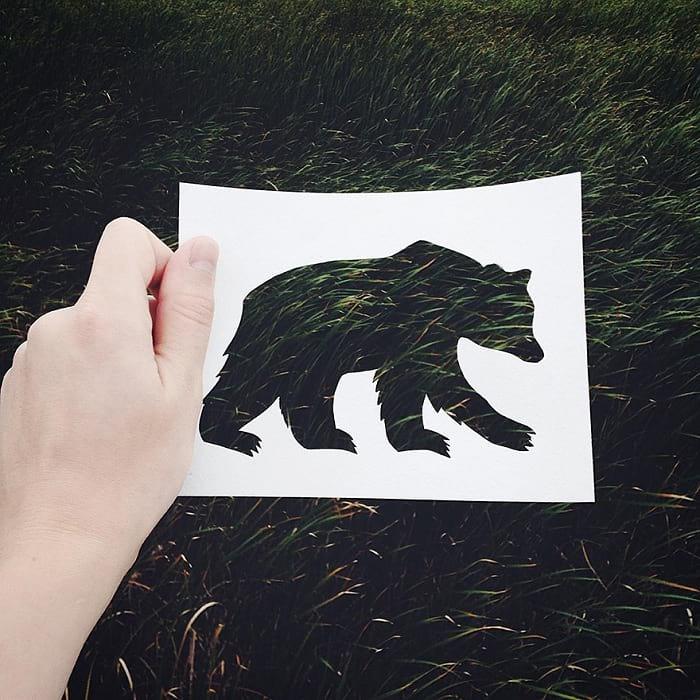 حیوانات با پوشش طبیعت (10)