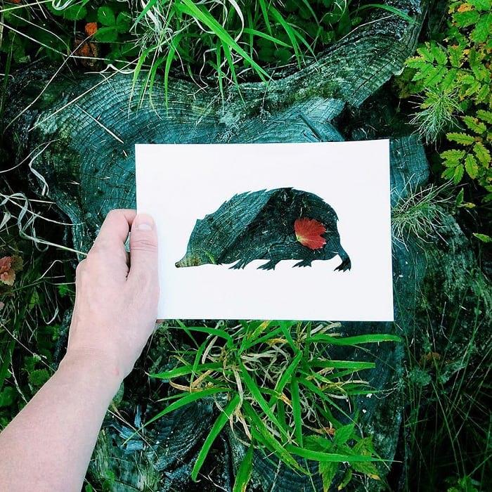 حیوانات با پوشش طبیعت (12)