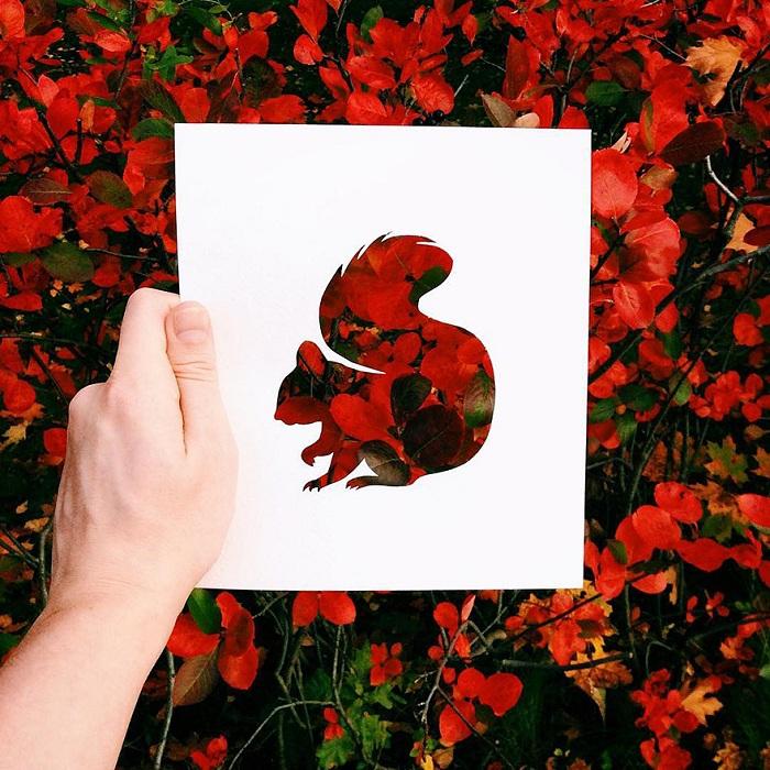 حیوانات با پوشش طبیعت (13)