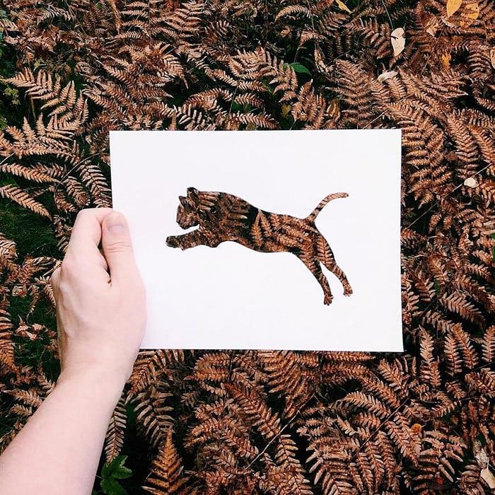 حیوانات با پوشش طبیعت (5)