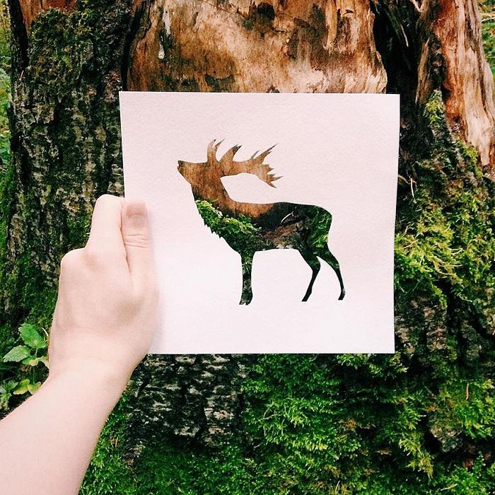 حیوانات با پوشش طبیعت (9)