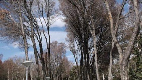 پارک هشت بهشت اصفهان
