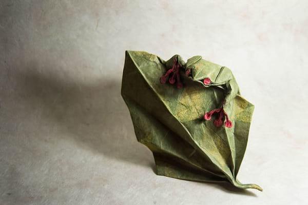 اوریگامی (19)
