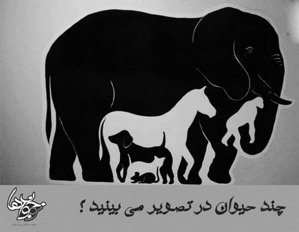 تعداد حیوانات