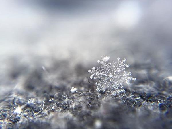 دانه های برف (2)