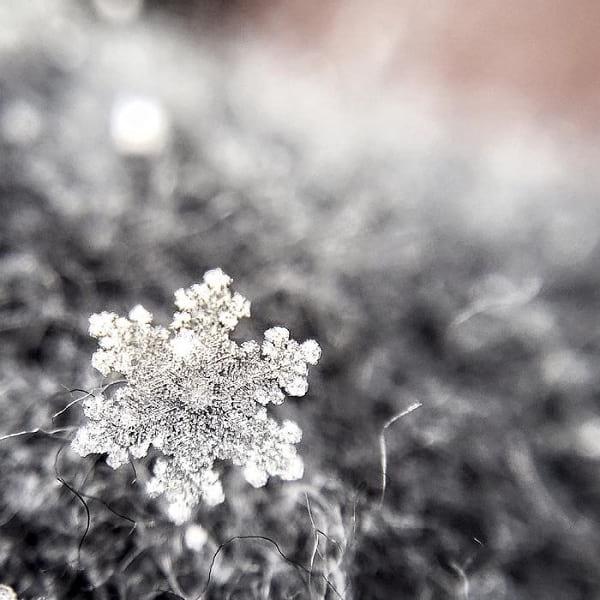 دانه های برف (3)
